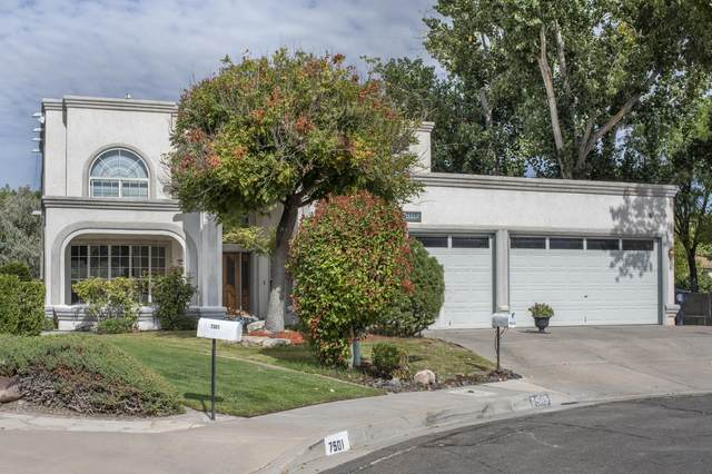 7505 Lew Wallace Drive NE, Albuquerque, NM 87109 (MLS #1001550) :: Campbell & Campbell Real Estate Services