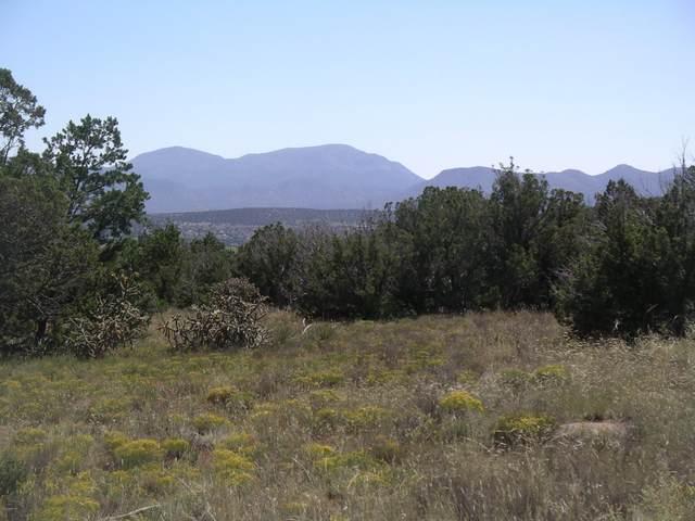 Pinon Park Trail, Sandia Park, NM 87047 (MLS #1001551) :: Keller Williams Realty