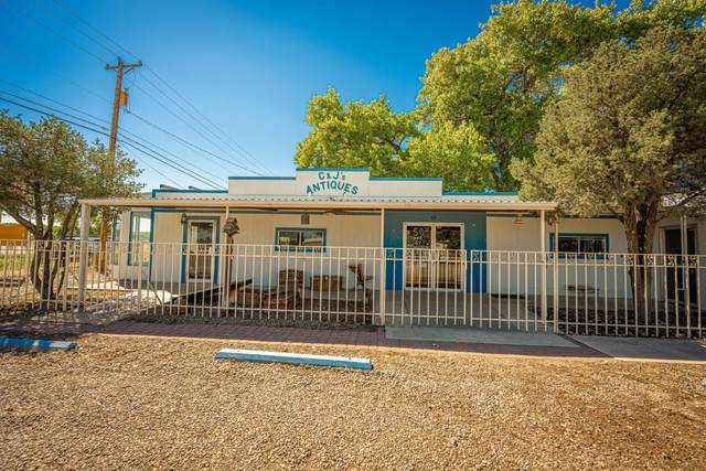 4243 Highway 314, Los Lunas, NM 87031 (MLS #1001574) :: Campbell & Campbell Real Estate Services