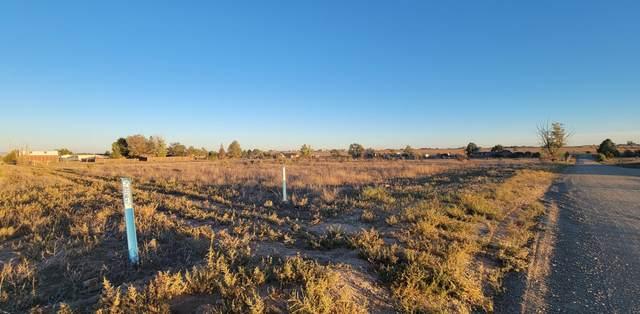 1 & 5 Dunkin Road, Edgewood, NM 87015 (MLS #1001593) :: Berkshire Hathaway HomeServices Santa Fe Real Estate
