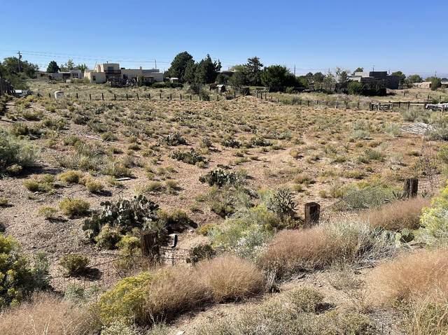 12100 Del Rey Avenue NE, Albuquerque, NM 87122 (MLS #1001630) :: HergGroup Albuquerque