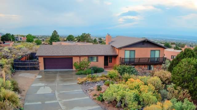 21 Cedar Hill Road NE, Albuquerque, NM 87122 (MLS #1001766) :: Campbell & Campbell Real Estate Services