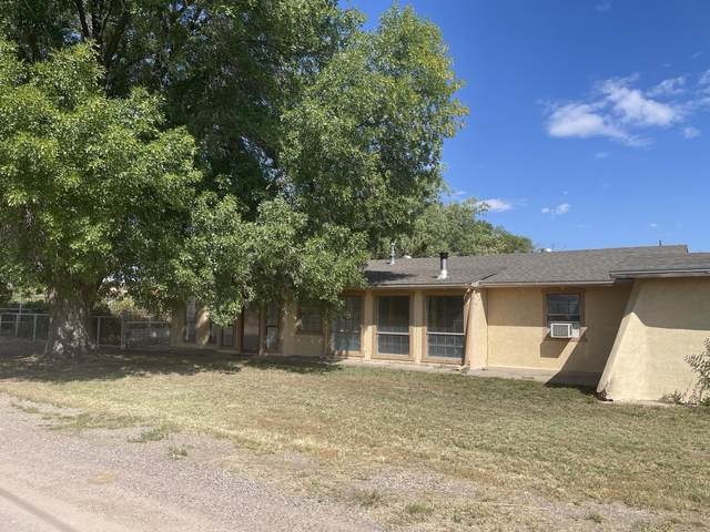 200 Hidden Lane, Socorro, NM 87801 (MLS #1001818) :: Campbell & Campbell Real Estate Services