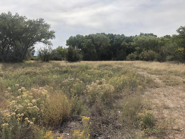 VL Twilight Drive, Belen, NM 87002 (MLS #1001845) :: Sandi Pressley Team