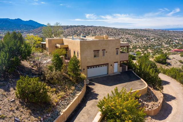 64 Camino De Las Brisas, Placitas, NM 87043 (MLS #1001866) :: Campbell & Campbell Real Estate Services