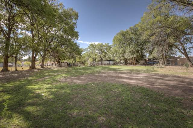 1421 Blake Road SW, Albuquerque, NM 87105 (MLS #1001876) :: Keller Williams Realty