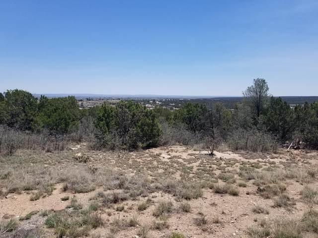 13 Barbara Lane, Edgewood, NM 87015 (MLS #1001883) :: The Buchman Group