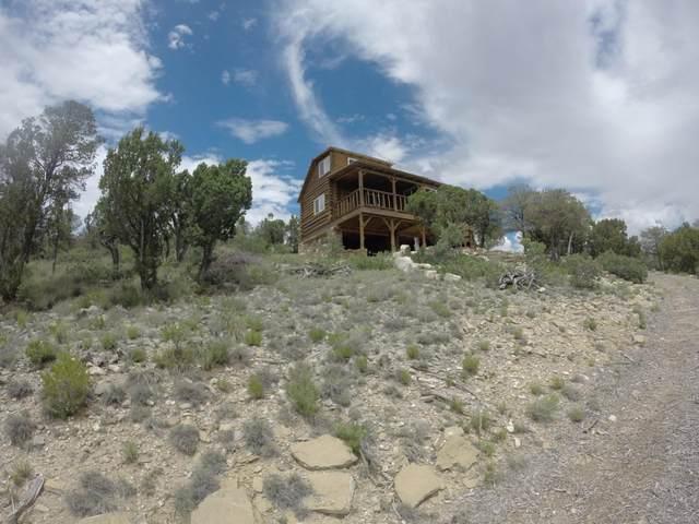 169 La Parra Road, Estancia, NM 87016 (MLS #1001975) :: Campbell & Campbell Real Estate Services