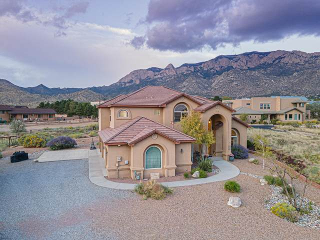 11701 Coyote Run Road NE, Albuquerque, NM 87122 (MLS #1001978) :: Campbell & Campbell Real Estate Services