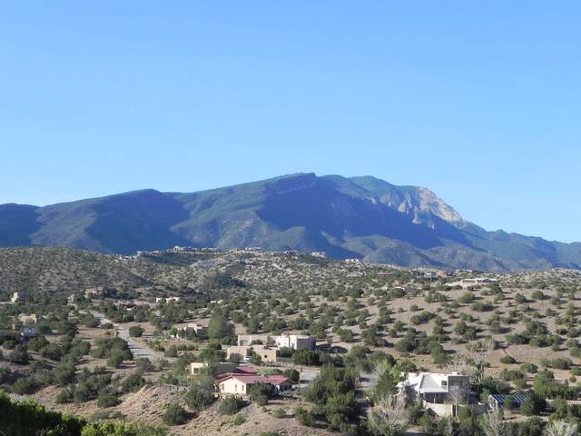 5 Windmill Court, Placitas, NM 87043 (MLS #1002034) :: Campbell & Campbell Real Estate Services