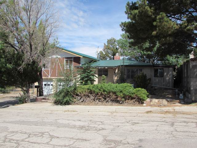 628 Flagstaff Avenue, Grants, NM 87020 (MLS #1002044) :: Campbell & Campbell Real Estate Services