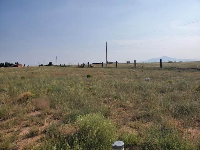 Vl Jensen Lane, Belen, NM 87002 (MLS #1002065) :: Campbell & Campbell Real Estate Services