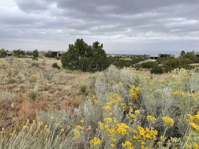6701 Saltbush Court NE, Albuquerque, NM 87111 (MLS #1002143) :: Campbell & Campbell Real Estate Services