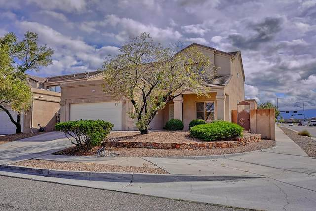 8000 Oso Abrazo Drive NE, Albuquerque, NM 87122 (MLS #1002146) :: Keller Williams Realty