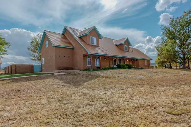 86 Madole Road, Edgewood, NM 87015 (MLS #1002179) :: The Buchman Group