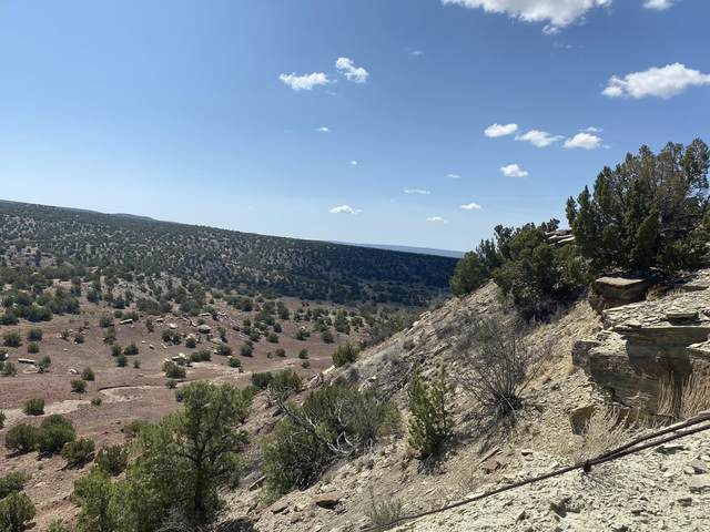 54 Moondance Way, Lamy, NM 87540 (MLS #1002184) :: Campbell & Campbell Real Estate Services