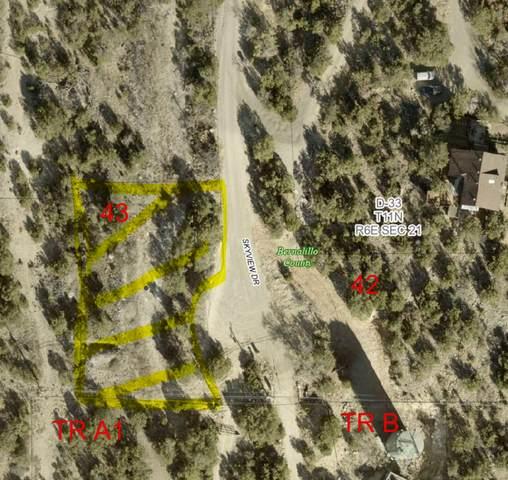 Skyview Drive, Sandia Park, NM 87047 (MLS #1002255) :: Keller Williams Realty