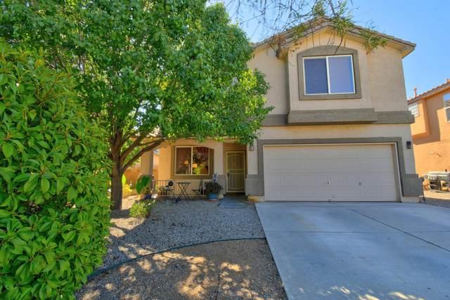 7401 Sidewinder Drive NE, Albuquerque, NM 87113 (MLS #1002299) :: Keller Williams Realty