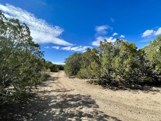 400 Scotts Lane, Tijeras, NM 87059 (MLS #1002306) :: Sandi Pressley Team