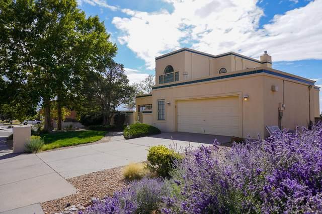 1701 Valdez Drive NE, Albuquerque, NM 87112 (MLS #1002322) :: HergGroup Albuquerque