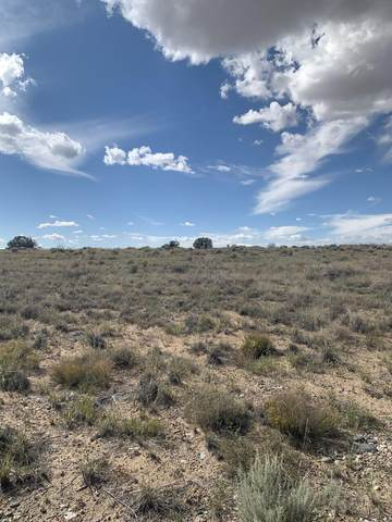 Lot 2 Block 7 Unit 20 Road NW, Albuquerque, NM 87120 (MLS #1002346) :: Campbell & Campbell Real Estate Services