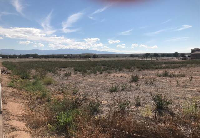 Shooting Star, Los Lunas, NM 87031 (MLS #1002354) :: Campbell & Campbell Real Estate Services