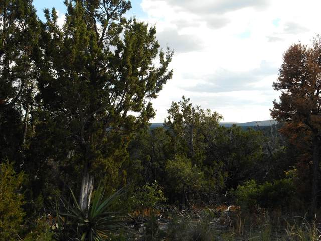 194 Via Sedillo, Tijeras, NM 87059 (MLS #1002458) :: Keller Williams Realty