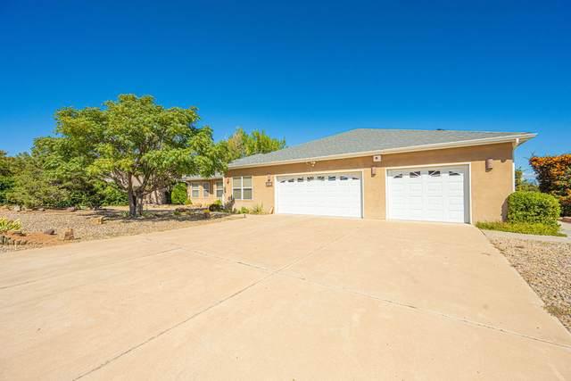 1320 Hillside Drive SW, Los Lunas, NM 87031 (MLS #1002483) :: Sandi Pressley Team