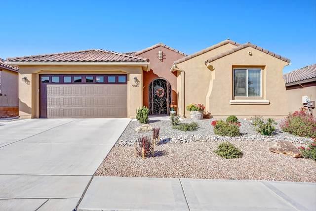 9013 Vista Bosquejo NW, Albuquerque, NM 87120 (MLS #1002521) :: Keller Williams Realty