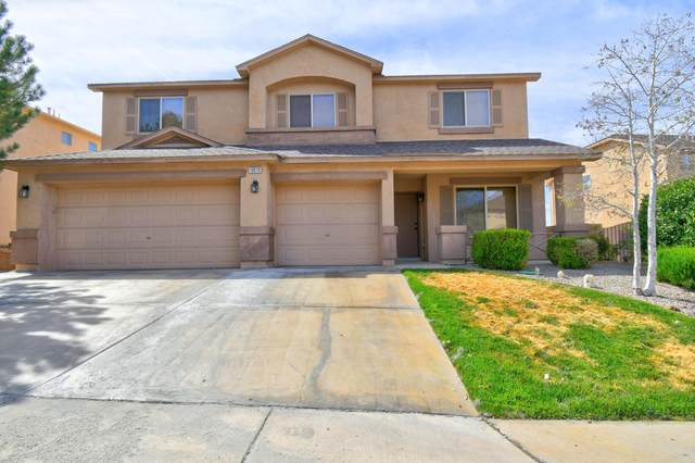 10519 E Box Canyon Place NW, Albuquerque, NM 87114 (MLS #1002610) :: Campbell & Campbell Real Estate Services