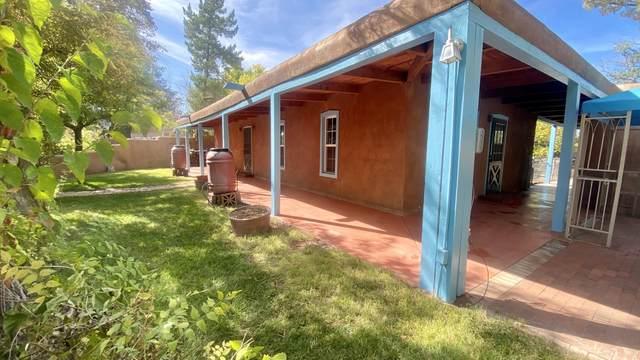 213 N Camino Los Milagros NW, Corrales, NM 87048 (MLS #1002617) :: Sandi Pressley Team