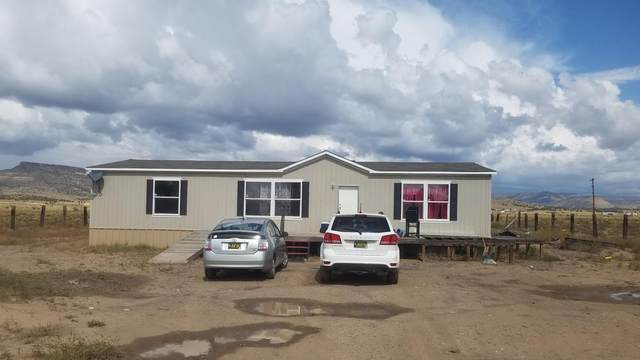 1351 Nm Highway 124, Cubero, NM 87014 (MLS #1002663) :: Campbell & Campbell Real Estate Services