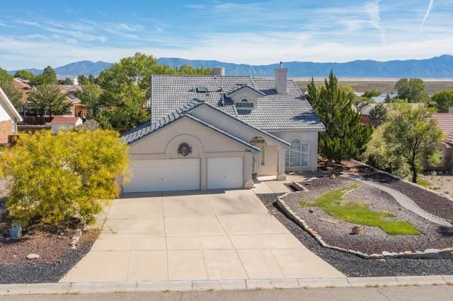56 Marigold Boulevard, Los Lunas, NM 87031 (MLS #1002673) :: Campbell & Campbell Real Estate Services
