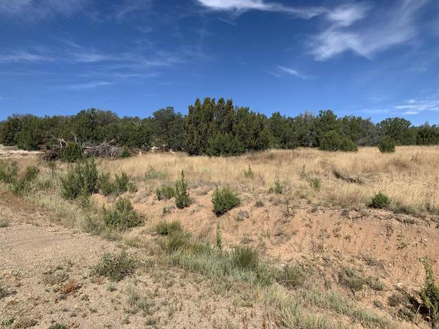 Tarn Road, Edgewood, NM 87015 (MLS #1002696) :: Campbell & Campbell Real Estate Services
