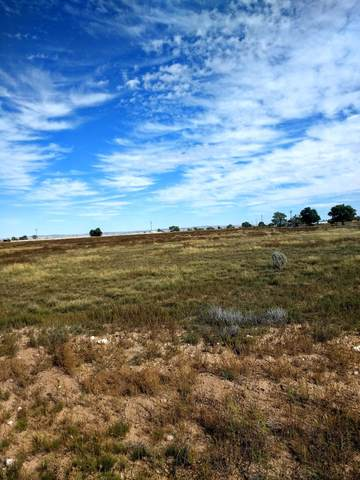 Terry, McIntosh, NM 87032 (MLS #1002724) :: Campbell & Campbell Real Estate Services