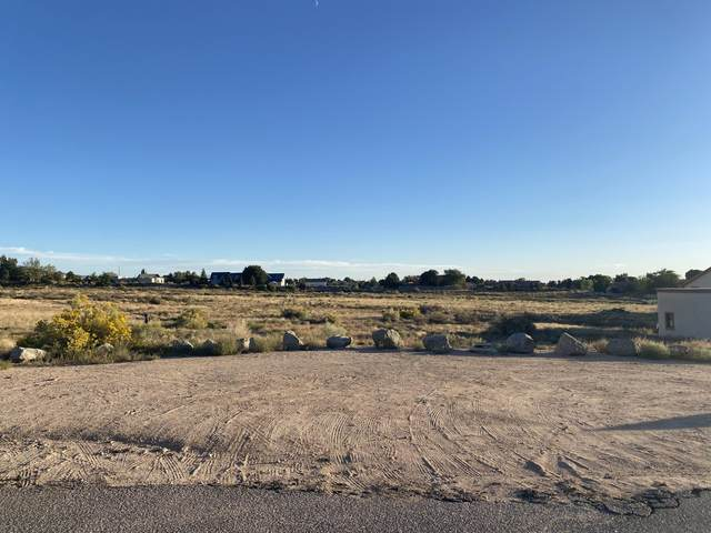 Ranchitos Road NE, Albuquerque, NM 87122 (MLS #1002768) :: Keller Williams Realty