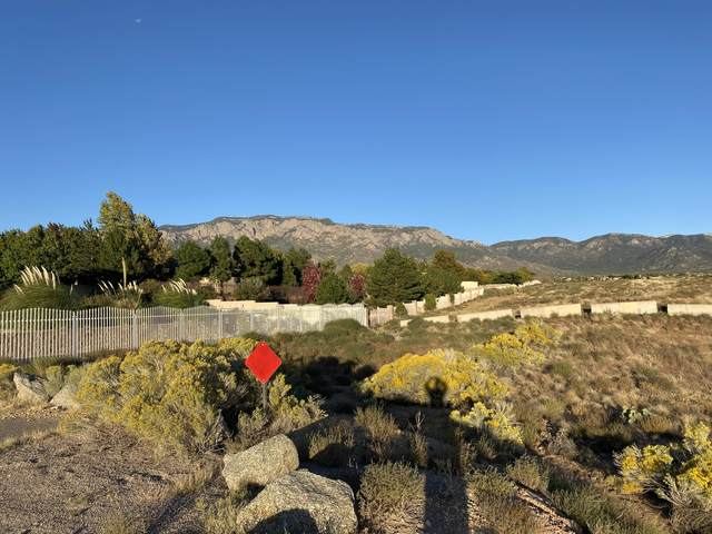 Ranchitos Road NE, Albuquerque, NM 87122 (MLS #1002770) :: Keller Williams Realty
