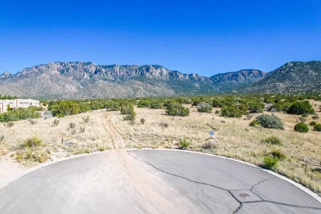 13715 Quaking Aspen Place NE, Albuquerque, NM 87111 (MLS #1002818) :: Keller Williams Realty