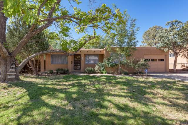 9921 Chapala Drive NE, Albuquerque, NM 87111 (MLS #1002834) :: Sandi Pressley Team