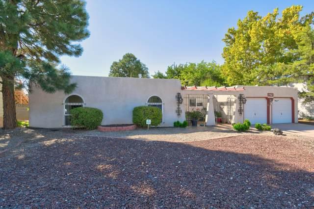 9108 James Avenue NE, Albuquerque, NM 87111 (MLS #1002843) :: The Buchman Group