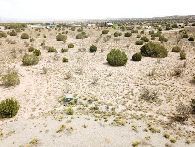 Lot 3 Pony Court, Placitas, NM 87043 (MLS #1002857) :: Sandi Pressley Team