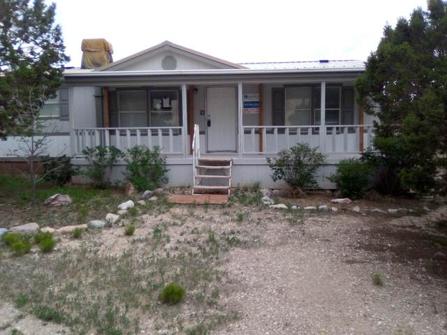 700 Monte Alto Avenue, Mountainair, NM 87036 (MLS #1002862) :: Campbell & Campbell Real Estate Services
