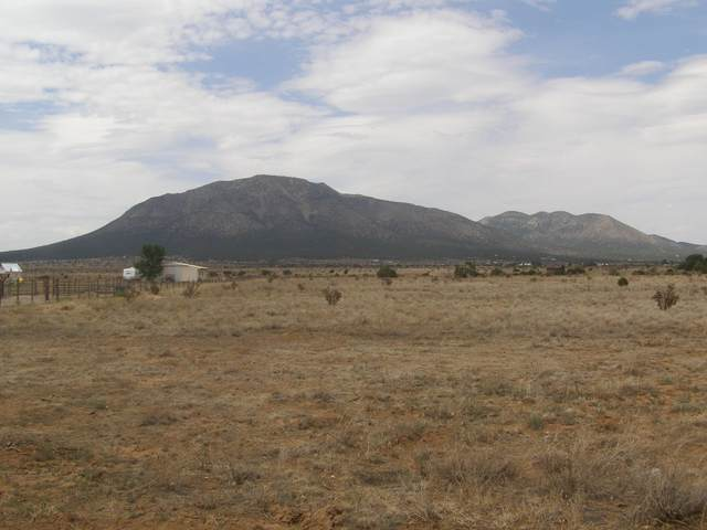 Tract E Frost Road, Edgewood, NM 87015 (MLS #1002891) :: The Buchman Group