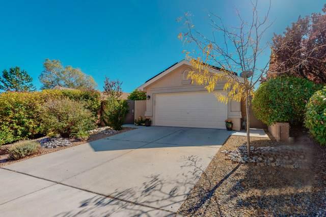 7716 Wood Stork Court NW, Albuquerque, NM 87114 (MLS #1002929) :: Sandi Pressley Team