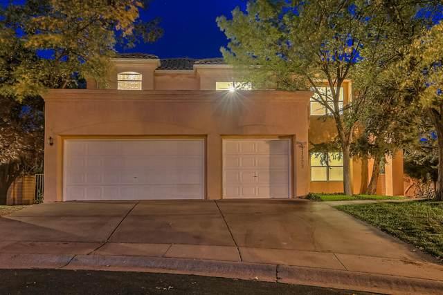 11329 Woodmar Lane NE, Albuquerque, NM 87111 (MLS #1002939) :: Keller Williams Realty
