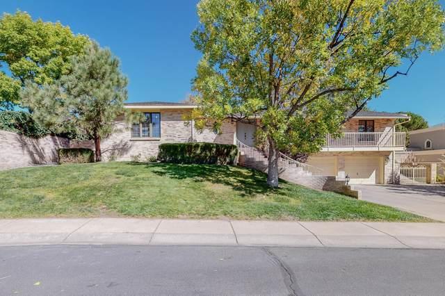 9624 St Andrews Court NE, Albuquerque, NM 87111 (MLS #1002949) :: Keller Williams Realty