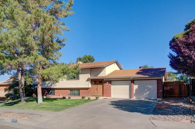9125 Las Camas Road NE, Albuquerque, NM 87111 (MLS #1002973) :: Keller Williams Realty
