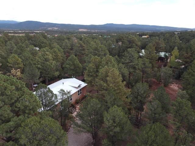18 Camino Cerrito, Pecos, NM 87552 (MLS #1002977) :: Campbell & Campbell Real Estate Services