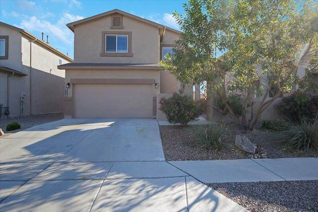 6716 Tree Line Avenue NW, Albuquerque, NM 87114 (MLS #1002986) :: Campbell & Campbell Real Estate Services