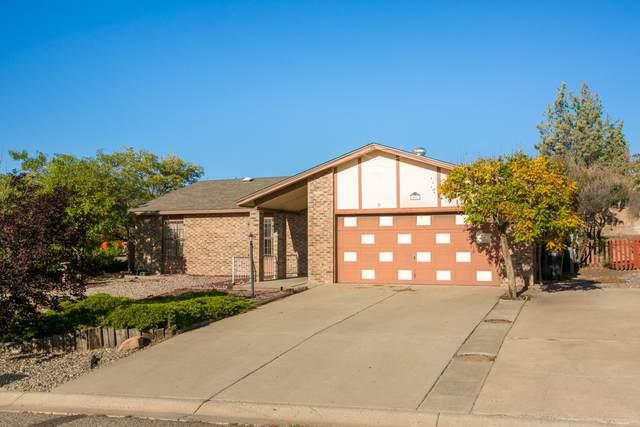 397 Feldspar Drive NE, Rio Rancho, NM 87124 (MLS #1002993) :: Sandi Pressley Team